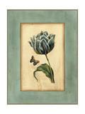 Crackled Spa Blue Tulip IV