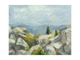 Impasto Mountainside III