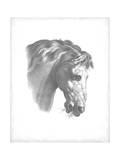 Equestrian Blueprint IV