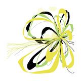 Citron Bloom 2