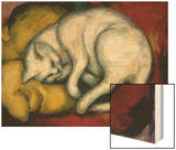 The White Cat  1912