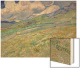 Wheatfield and Mountains  c1889