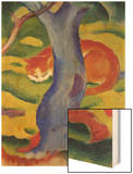 Cat Behind a Tree  1910/11