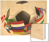 3D World Soccer Ball