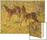 Fohlen Auf Der Weide  1909