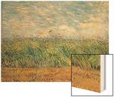 Wheatfield with Lark  1887