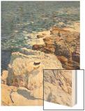 Southern Rock Riffs  Appledore