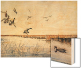 Ducks Landing  1919