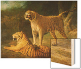 A Tiger and Tigress at the Exeter 'Change Menagerie in 1808  1808