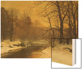 A Winter River Landscape