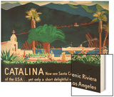 Catalina Island Travel Poster