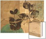 Leaf Kaleidescope 2