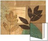 Leaf Kaleidescope 1