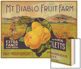 Bancroft  California  Mt Diablo Fruit Farm Brand Pear Label