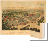 1904  Saint Louis World's Fair Bird's Eye View Unattributed Publisher  Missouri  United