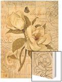 Magnolia Etching