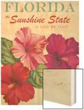 Sunshine State