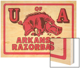 Arkansas Razorback Mascot