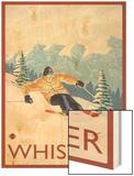 Downhhill Snow Skier  Whistler  BC Canada