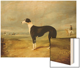 A Black and White Greyhound in an Open Landscape  with Hunters and Huntsmen Beyond