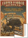 Copper Harbor  Michigan - Black Bears