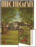 Michigan - Cherry Orchard Harvest