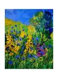 Wild Flowers 454170