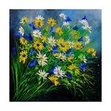 Wild Flowers7741