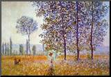 Claude Monet Poplars in the Sunlight Art Print Poster