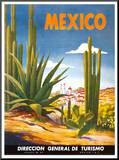 Cacti  Mexico