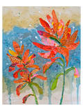 Indian Paintbrush II