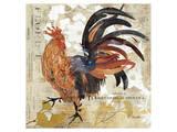 November Rooster