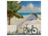 Beach Dunes 01