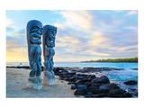 Sentinels of the Big Island Hawaii