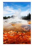 Castle Geyser Yellowstone Park