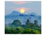 Sunrise Jungles of Sri Lanka