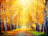 Autumn Fall Autumnal Park Autumn Trees and Leaves in Sun Rays Beautiful Autumn Scene