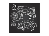 Pork and Beef Cuts - Hand Drawn Set