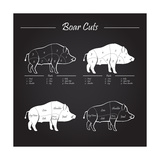 Boar Meat Cut Diagram - Elements Blackboard