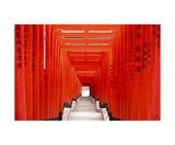 Torii Gates At Hie Shrine  Tokyo  Japan