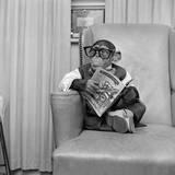 Clever Monkey Papier Photo par Vecchio