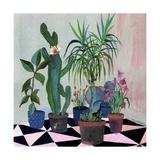 Garden 6  2014