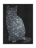 Cat - Stars - Night Sky - Design