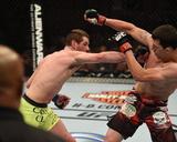UFC 181 - White v Collard