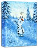 Hello I'm Olaf