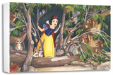 Snow White's Discovery