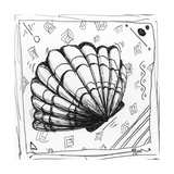 Coastal Sea Scallop Shell Beach Sketch