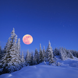 Winter Landscape in the Mountains at Night A Full Moon and a Starry Sky Carpathians  Ukraine