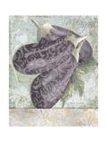 Buon Appetito Eggplant Soft Whimsical