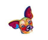 Lou the Chihuahua